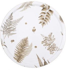 1001-46 STENSÖTA植物HJERTÉN & HJERTÉN 桦木米白色托盘