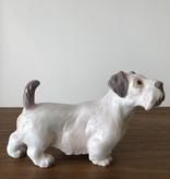 RARE PORCELAIN 稀土瓷西里汉爹利小狗摆设