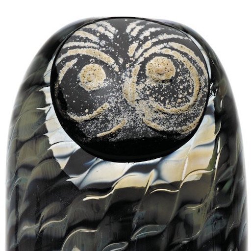 SOOTY OWL 熏黑的猫头鹰