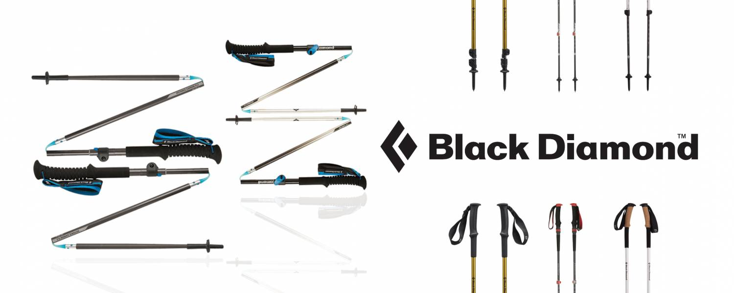 Black Diamond Trekking Pole
