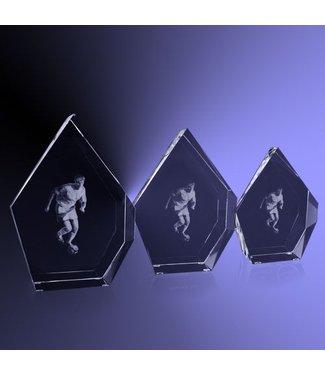 """Award """"Prestige"""" Voetbal"""