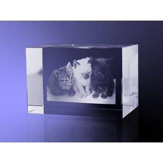 2D foto in glas - Rechthoek blok 6x6x9 cm