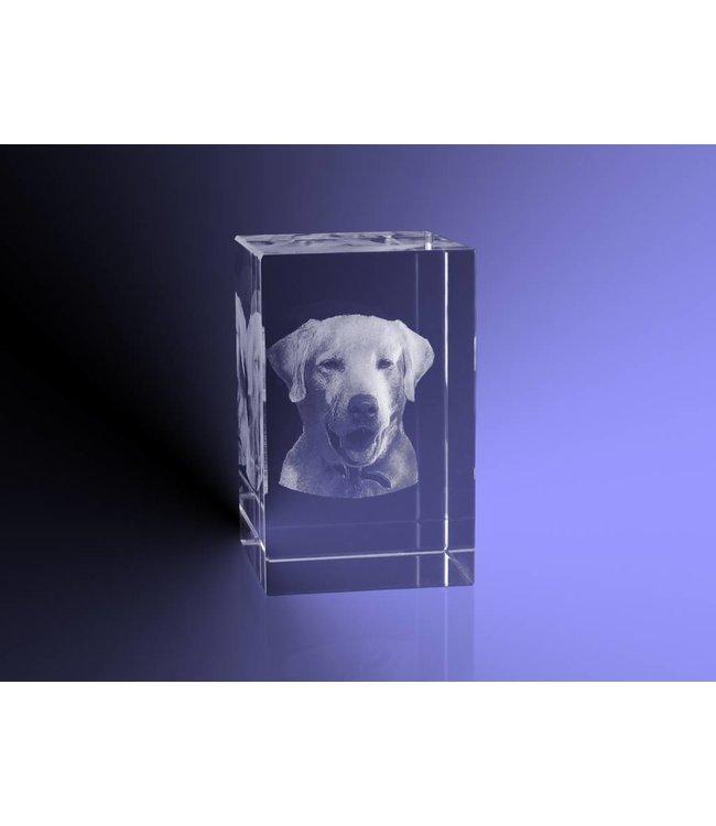 3D foto in glas - Rechthoek Blok - 4x4x6 cm