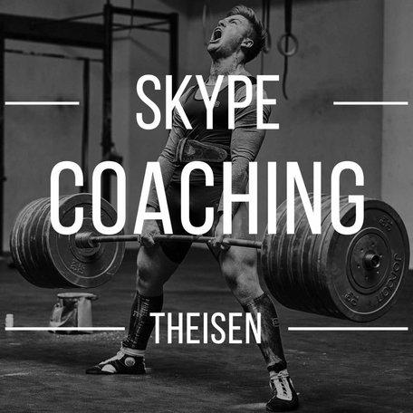 Skype Coaching (Theisen)