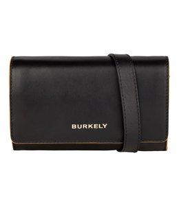Burkely Birthday 549343