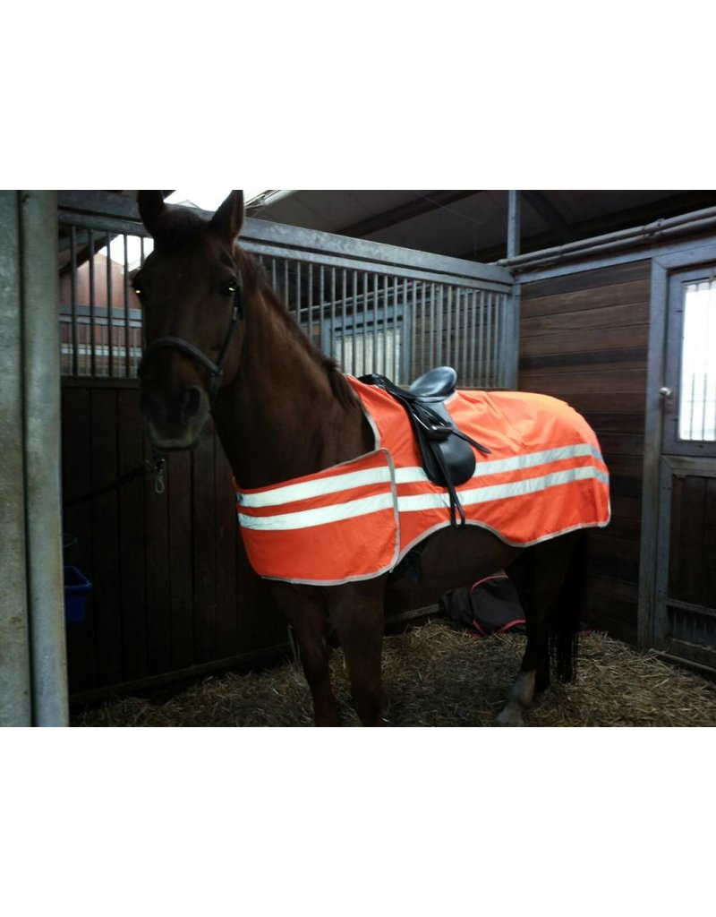 LuBa Pferdedecken®  Sicherheitsreitdecke Reflektierende
