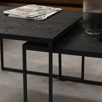 Blackster Salontafel Zwart Industrieel Teakhout Set van 2