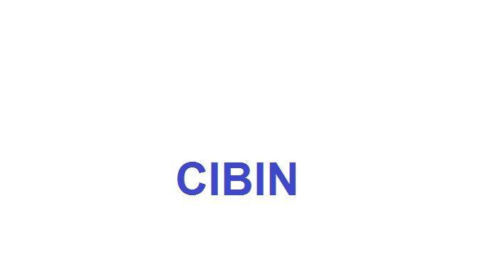 CIBIN