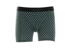 Garage Boxershort Washington Green Heren