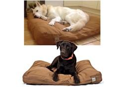 Carhartt Dog Bed Bruin Hondenkussen