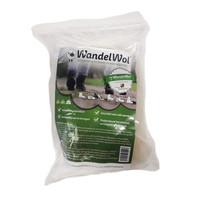Antidruk-Wol 40 gram