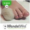 WandelWol Antidruk-Wol 10 gram