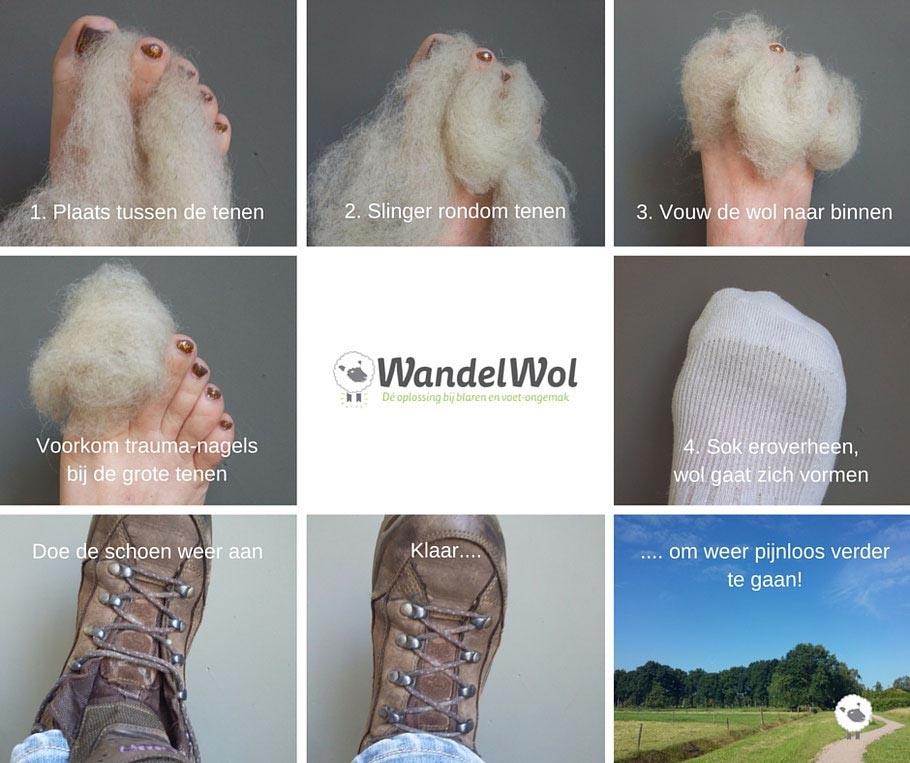 WandelWol - bd store