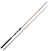 Rextail Sea Bass 300 Spinhengel