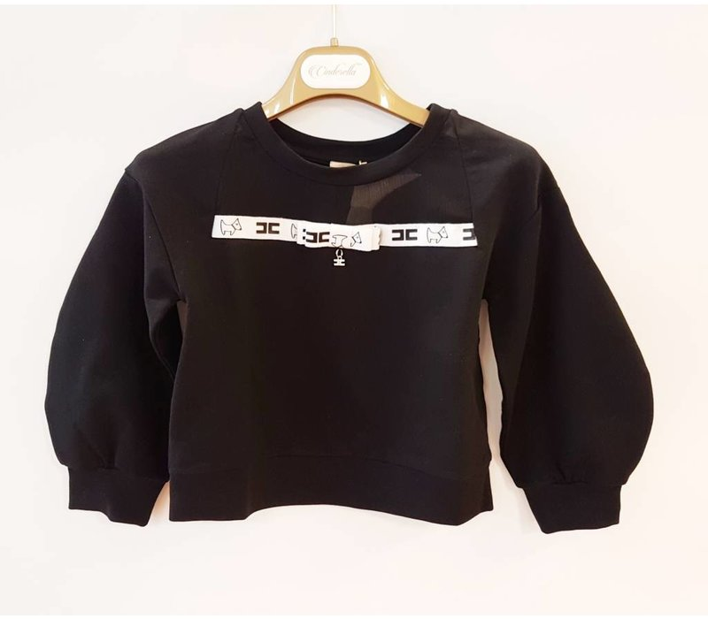 Elisabetta Franchi sweater