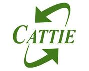 Cattie
