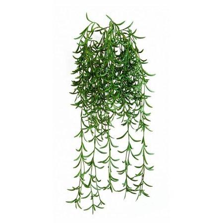 Succulent Hanging Plant