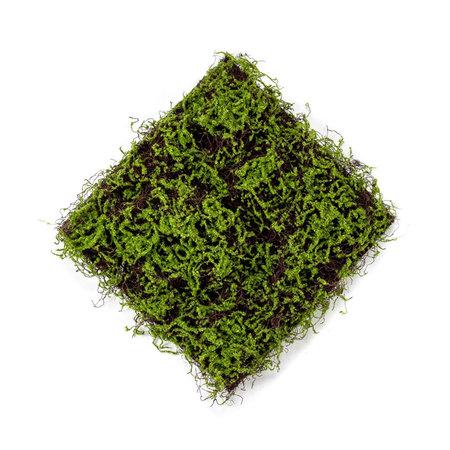 Grasmat met mos Groen L50 B50