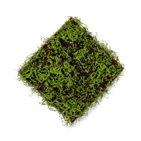 Grass mat with moss