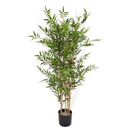 Japanse Bamboe UV