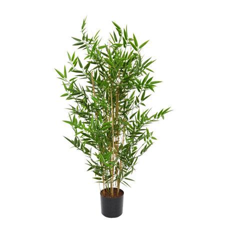 Japanese Bamboo UV