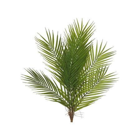 Areca palm steker