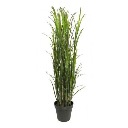 Lignac Grass UV