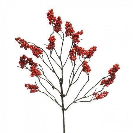 Berry branch Symphorycarpus