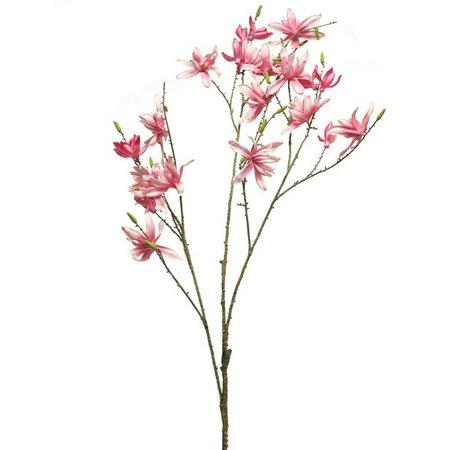 Magnolia Mini Branch