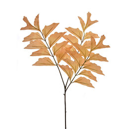Fishtail Branch x3