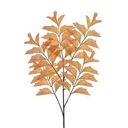Fishtail Branch x5