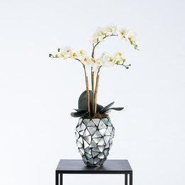 Beau gevuld met orchideeën