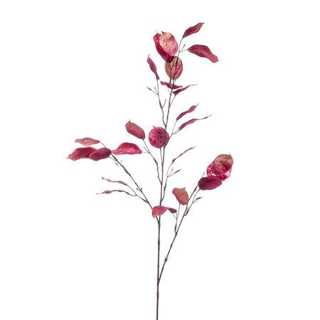 Lunaria Spray Roze