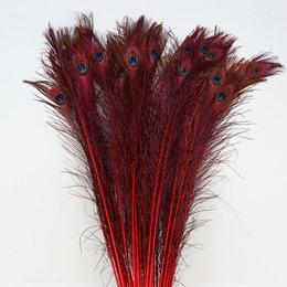 Pauwenveer Rood L100-110 / 10 stuks