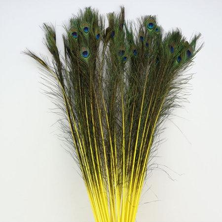 Pauwenveer Geel L100-110 / 10 stuks
