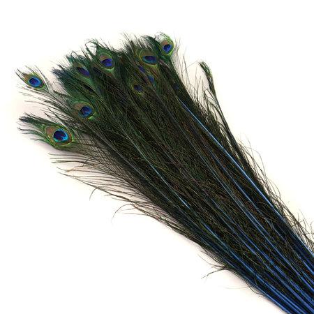 Pauwenveer Blauw L90-100 / 10 stuks