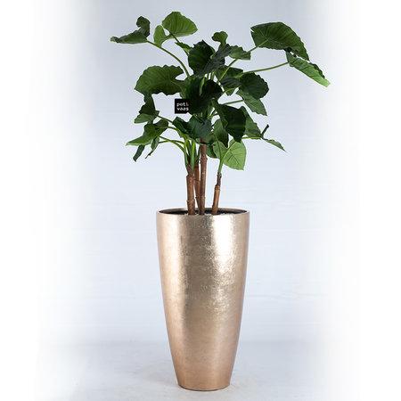 Pot of Cava