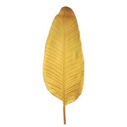 Bananenblad Beige H110