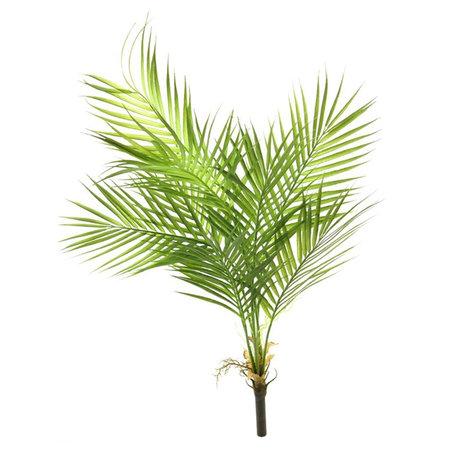 Areca palm Steker Groen H91