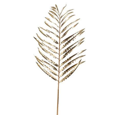 Areca Palm Blad Goud H85