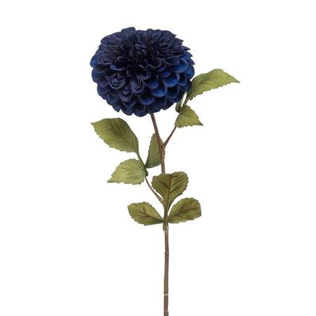 Dahlia Tak Blauw H74