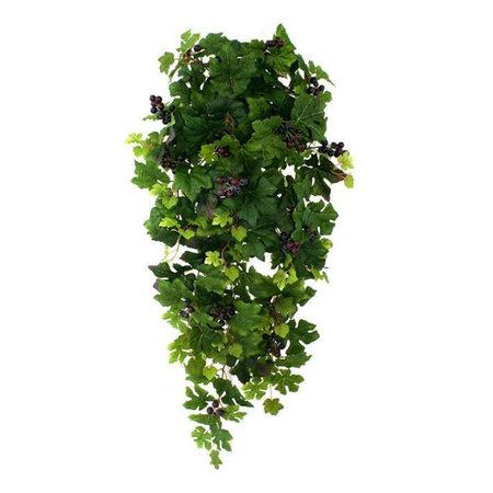 Hangplant Druifhanger Groen H90