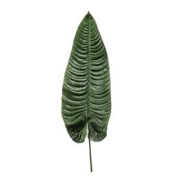 Olifantsoor blad Groen H105
