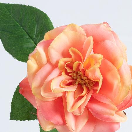 Rose (SILK-KA)