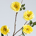 Rose branch (SILK-KA)