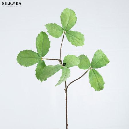 Sawn Leaf branch (SILK-KA)