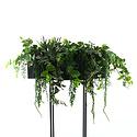 Succulent Hangplant Groen