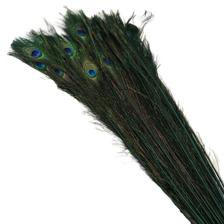 Pauwenveer Groen L100 / 10 stuks