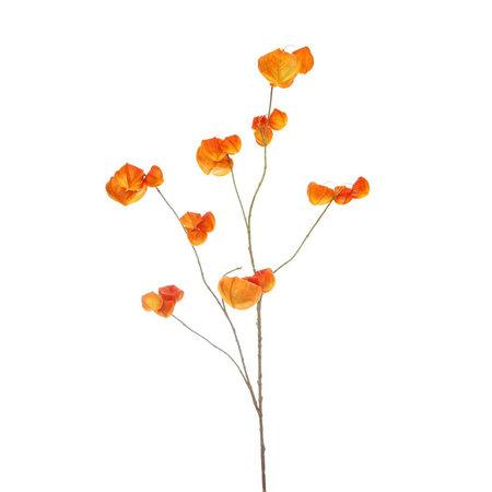 Houzuki Tak Oranje H110