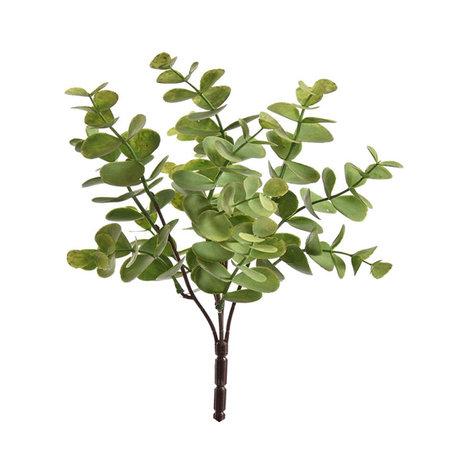 Eucalyptus steker Groen H33